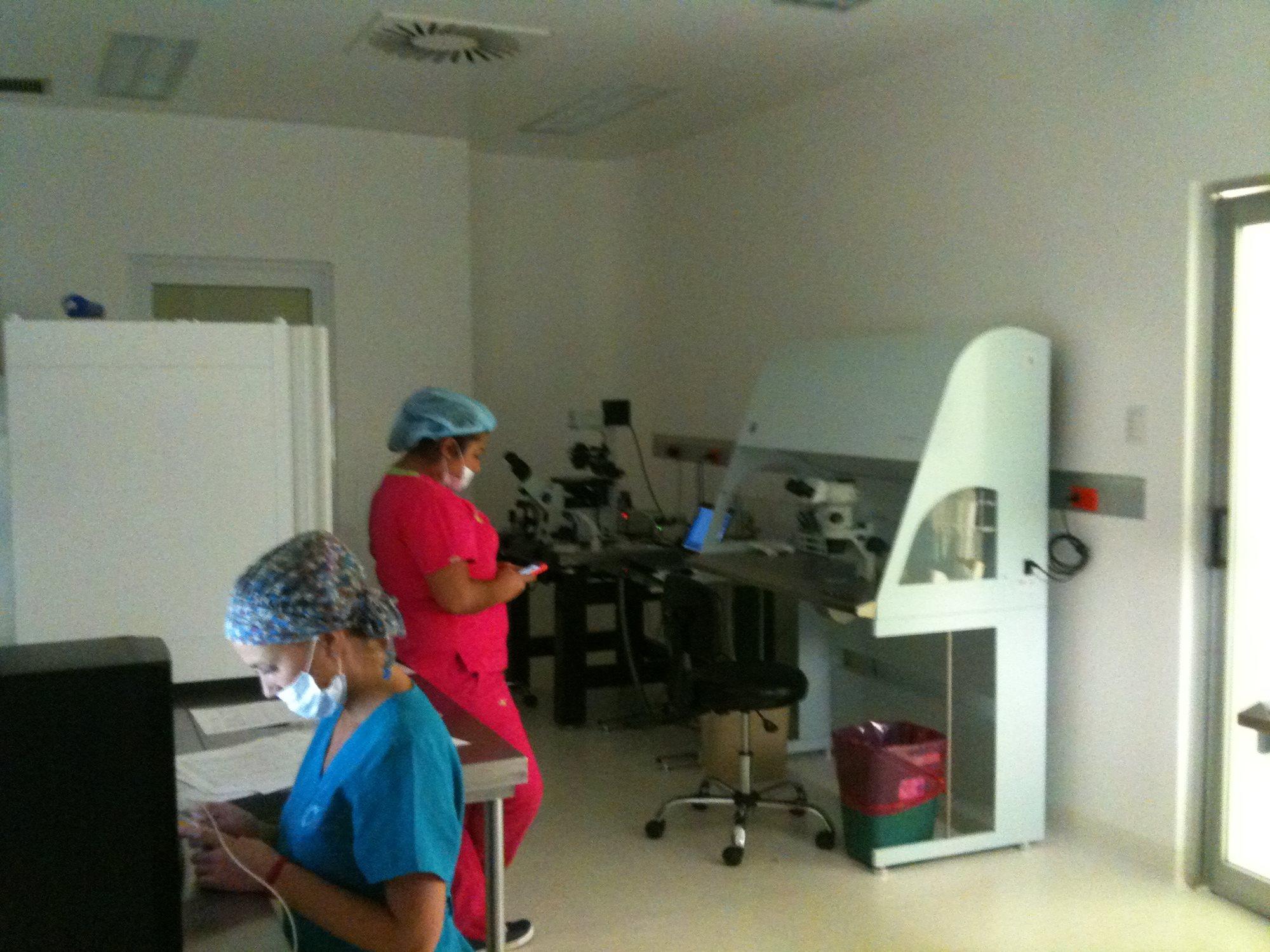 Photo Surrogacy 2